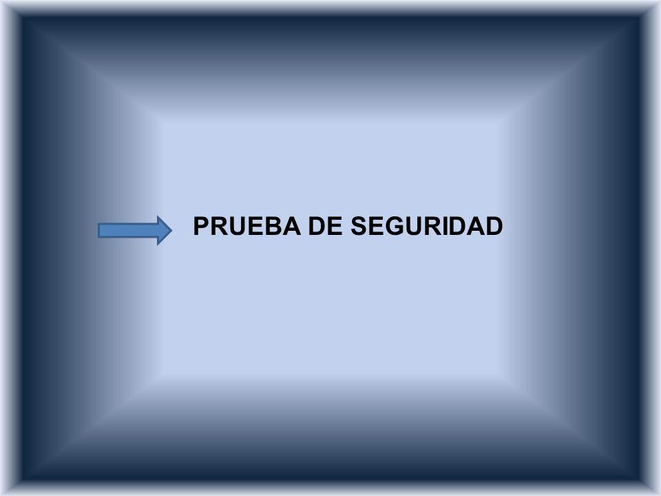 PRUEBA DE SEGURIDAD