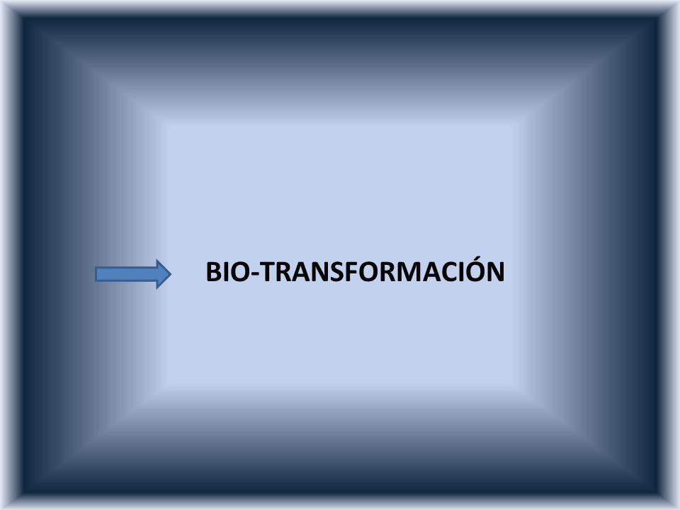BIO-TRANSFORMACIÓN /D RVLV OHWDO / HV DTXHOOD FRQFHQWUDFLyQ GHO LQVHFWLFLGD TXH DO VHU.