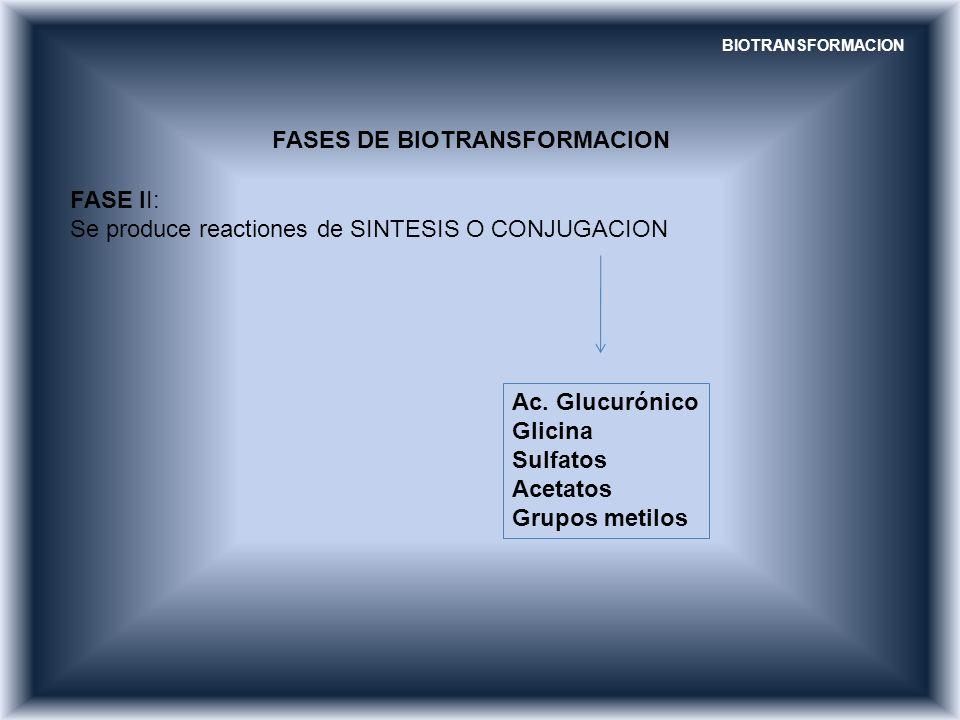 FASES DE BIOTRANSFORMACION