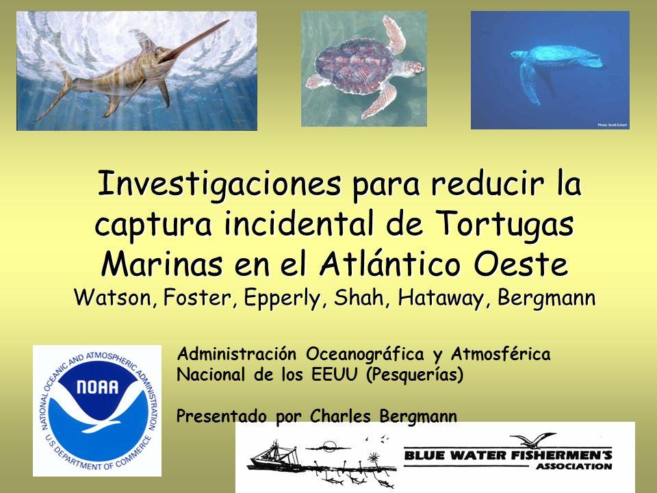 Investigaciones para reducir la captura incidental de Tortugas Marinas en el Atlántico Oeste Watson, Foster, Epperly, Shah, Hataway, Bergmann