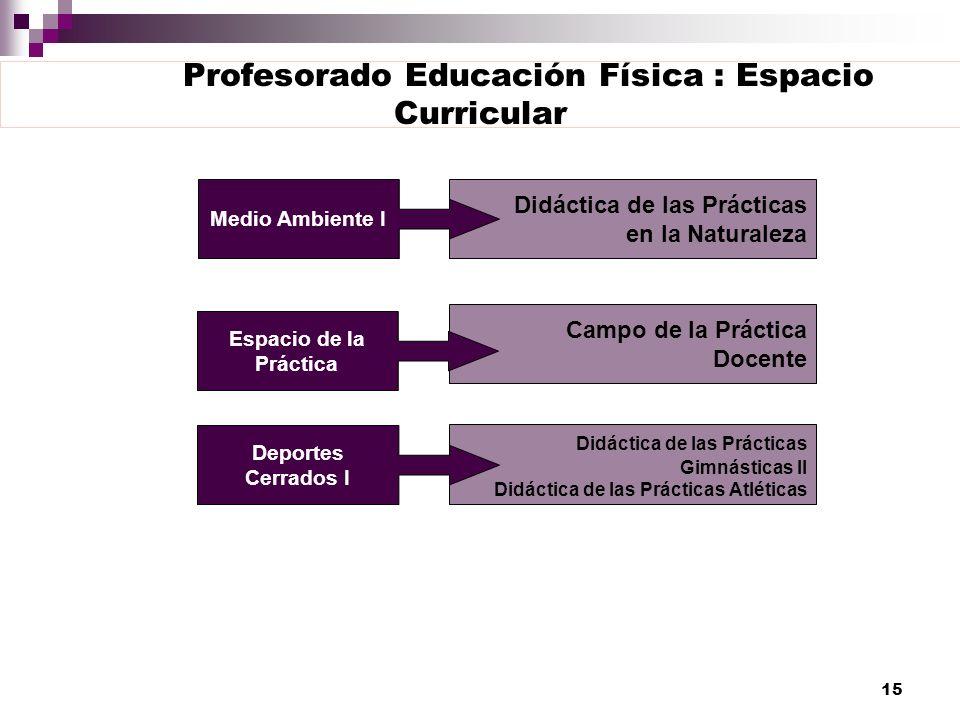 Profesorado Educación Física : Espacio Curricular
