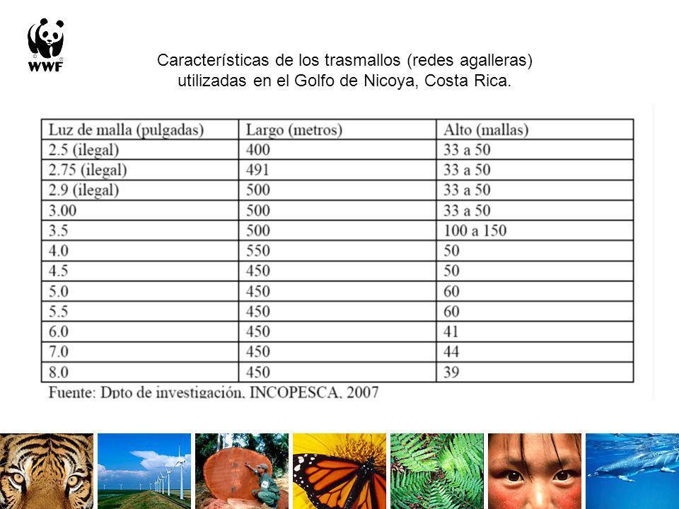 Características de los trasmallos (redes agalleras) utilizadas en el Golfo de Nicoya, Costa Rica.