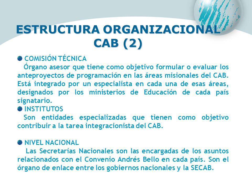 ESTRUCTURA ORGANIZACIONAL CAB (2)