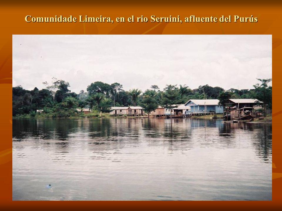 Comunidade Limeira, en el rio Seruini, afluente del Purús