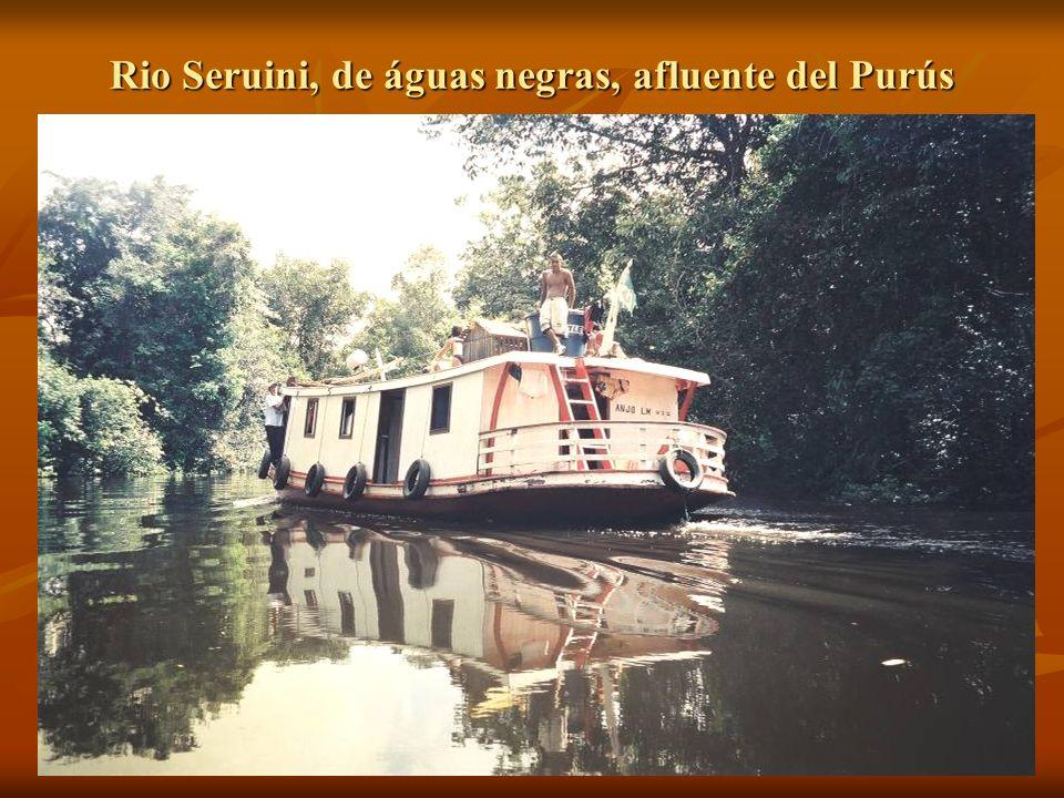 Rio Seruini, de águas negras, afluente del Purús