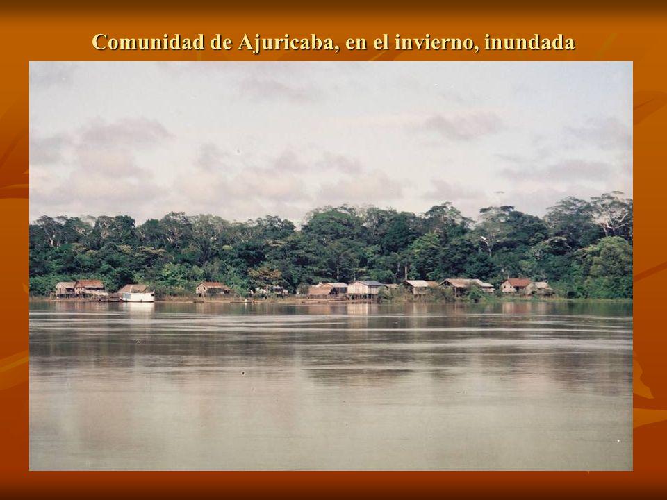 Comunidad de Ajuricaba, en el invierno, inundada