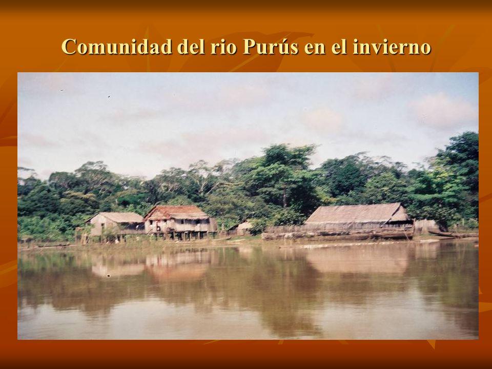 Comunidad del rio Purús en el invierno