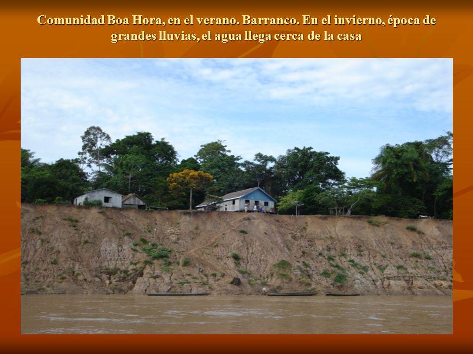 Comunidad Boa Hora, en el verano. Barranco