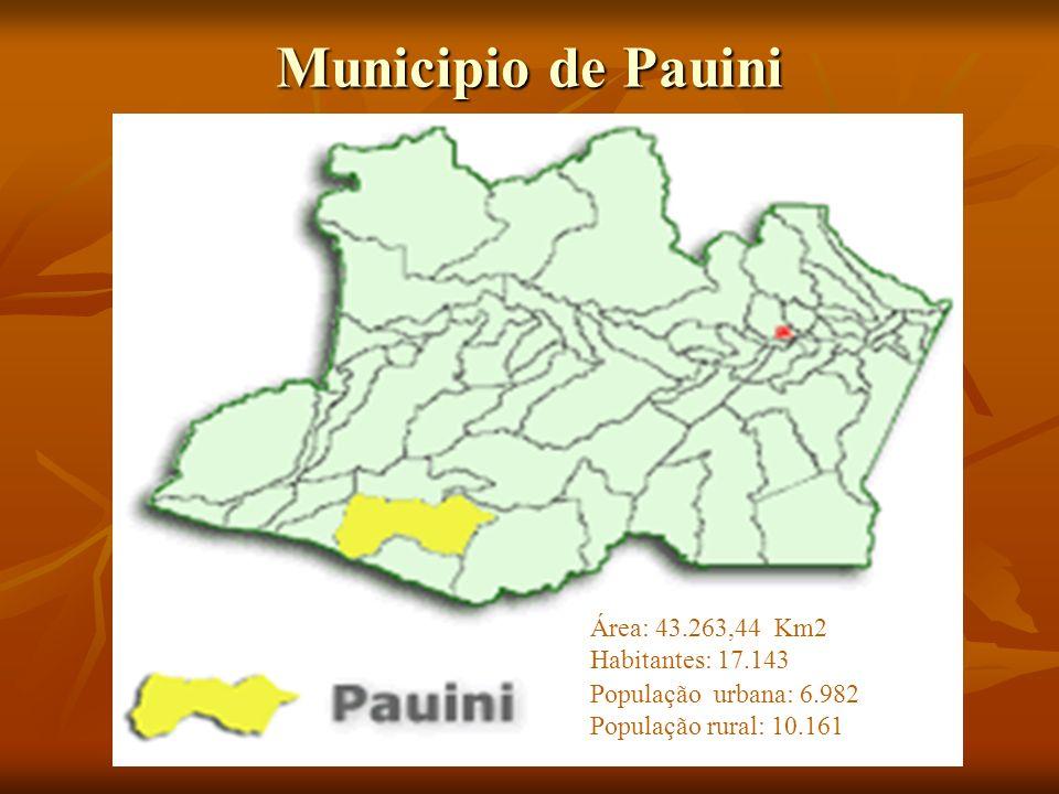 Municipio de Pauini Área: 43.263,44 Km2 Habitantes: 17.143