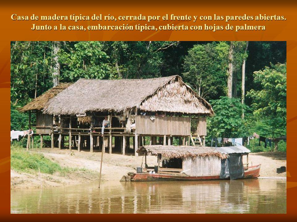 Casa de madera típica del río, cerrada por el frente y con las paredes abiertas.
