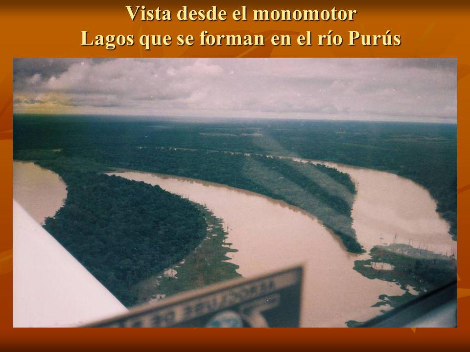 Vista desde el monomotor Lagos que se forman en el río Purús