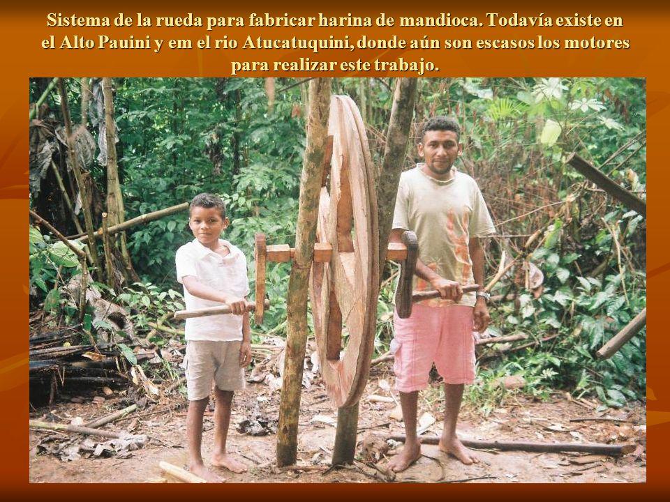 Sistema de la rueda para fabricar harina de mandioca
