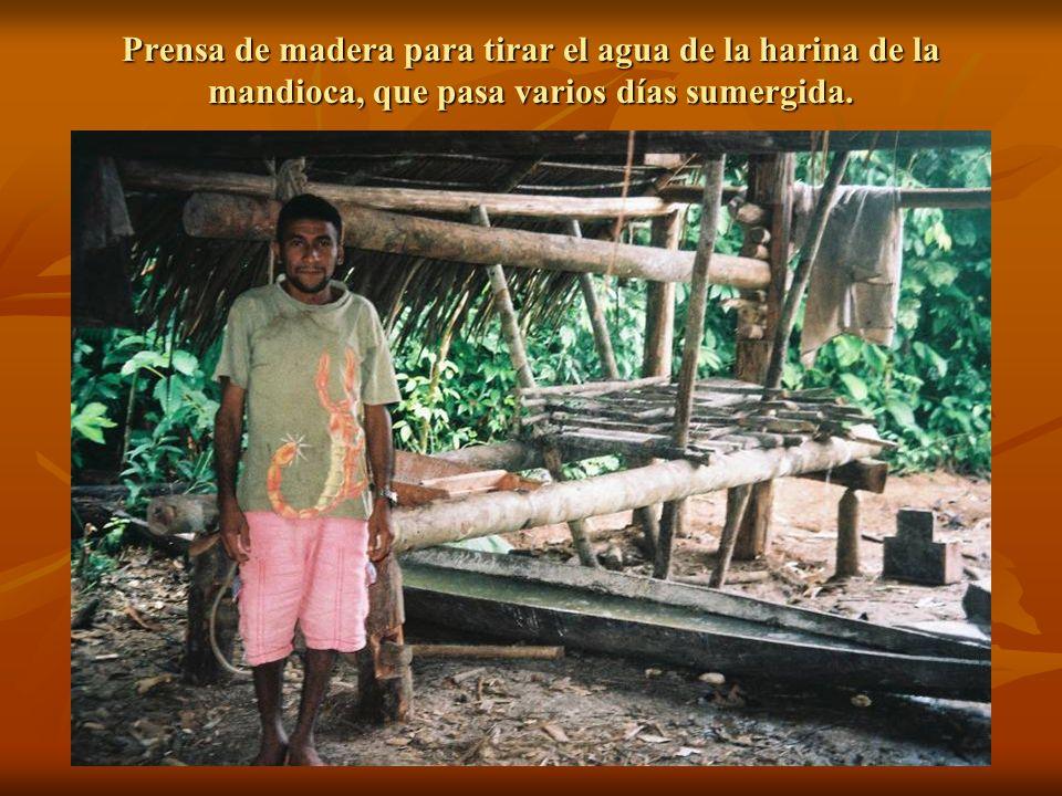 Prensa de madera para tirar el agua de la harina de la mandioca, que pasa varios días sumergida.