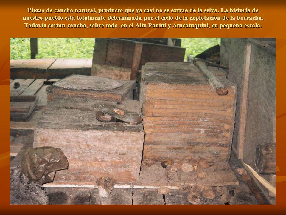 Piezas de caucho natural, producto que ya casi no se extrae de la selva.