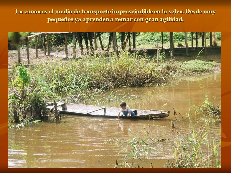 La canoa es el medio de transporte imprescindible en la selva