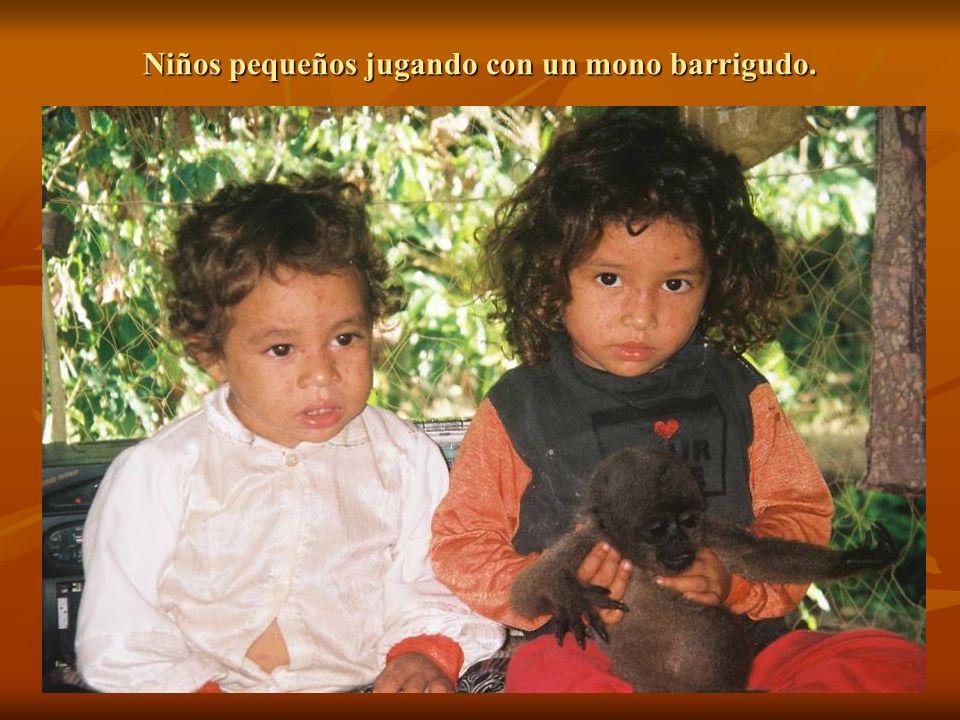 Niños pequeños jugando con un mono barrigudo.