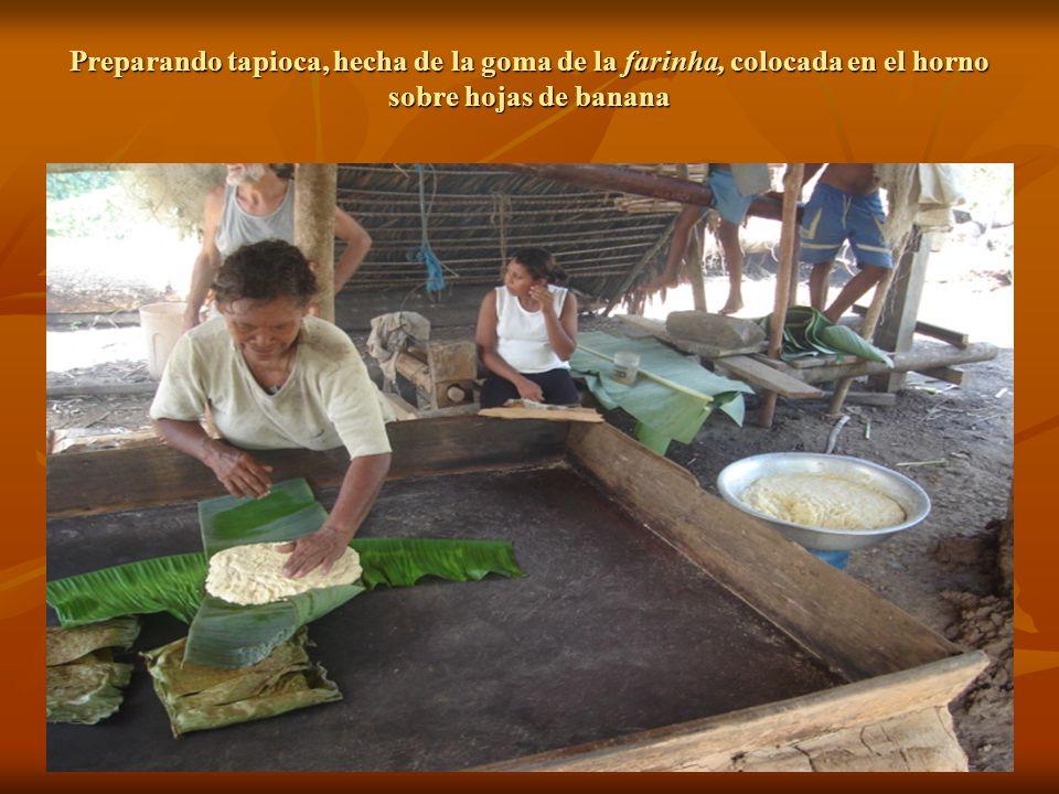 Preparando tapioca, hecha de la goma de la farinha, colocada en el horno sobre hojas de banana