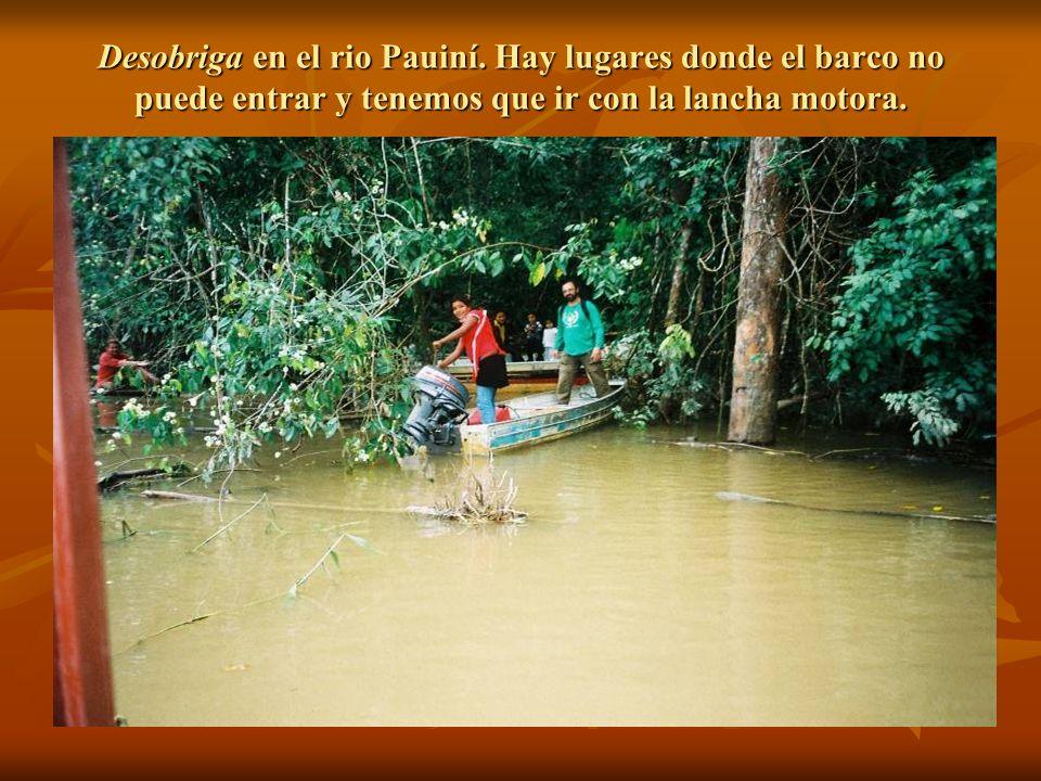 Desobriga en el rio Pauiní
