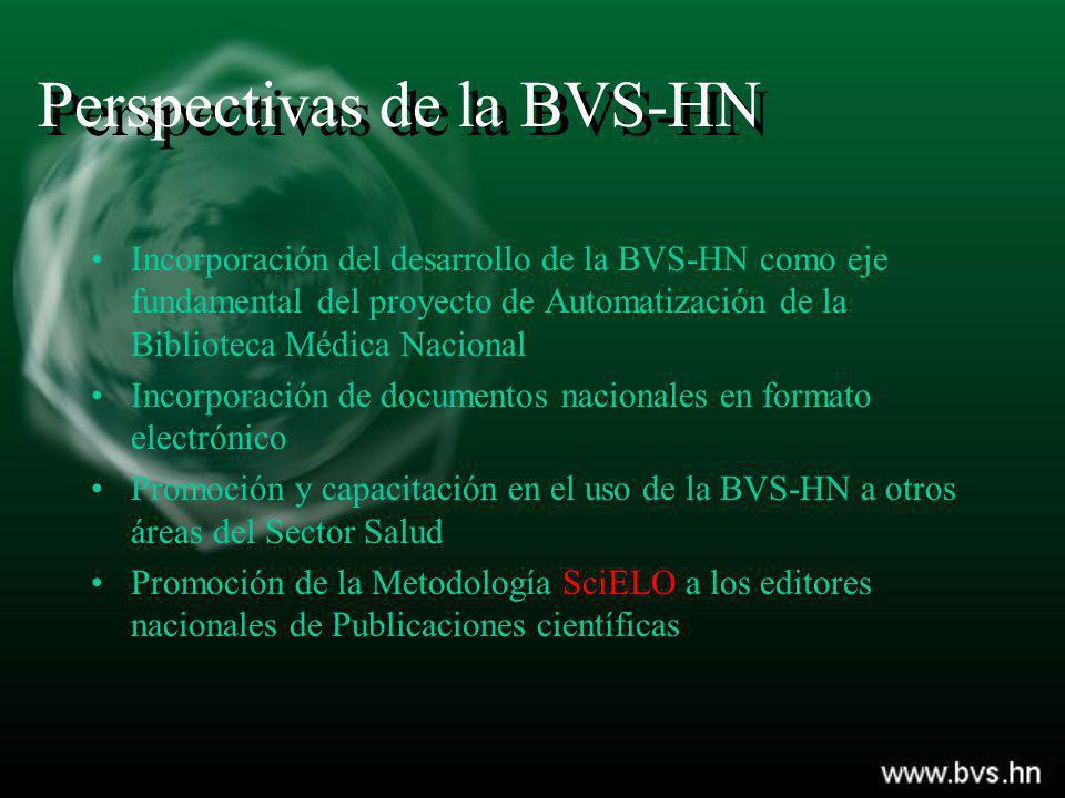 Perspectivas de la BVS-HN