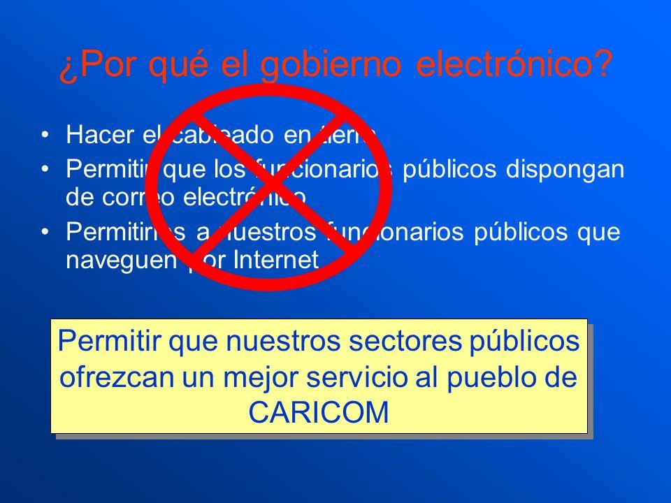 ¿Por qué el gobierno electrónico