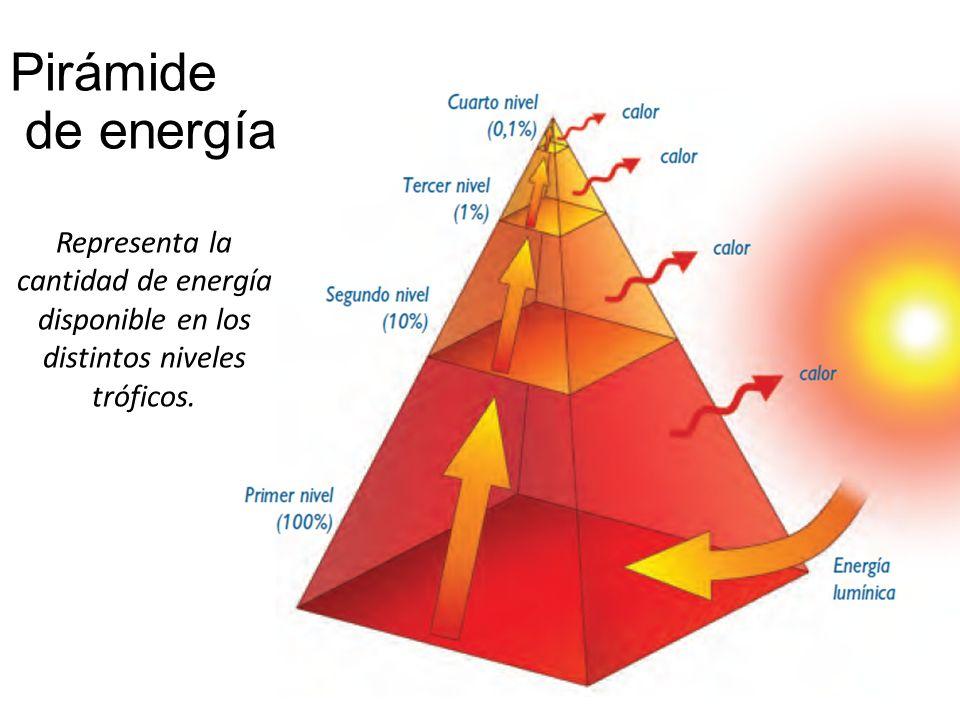 Energia de la biomasa yahoo dating 1