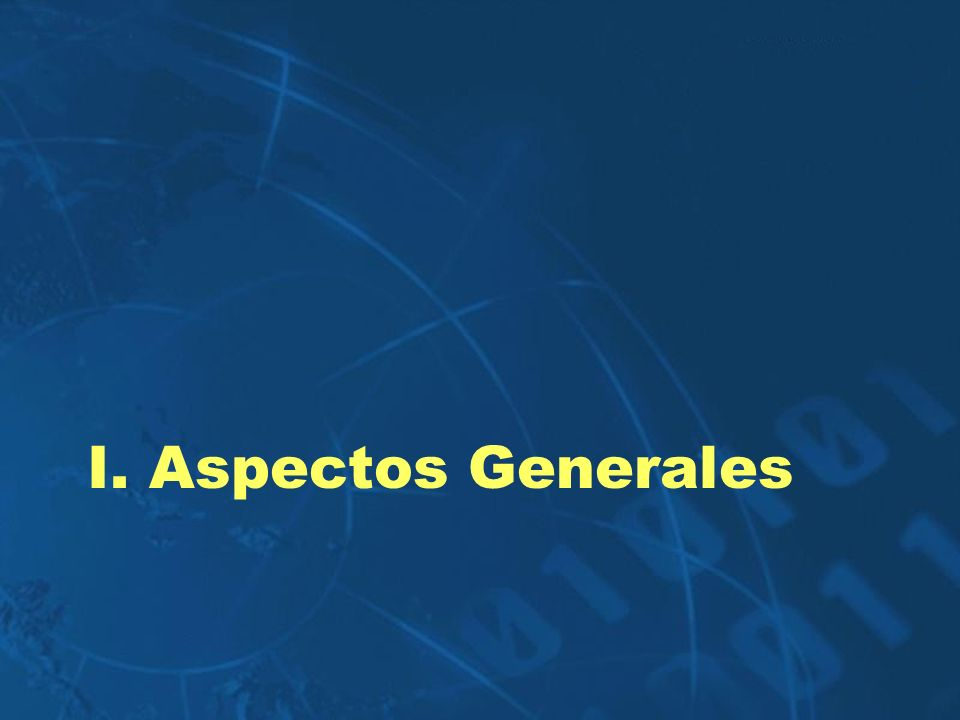 I. Aspectos Generales