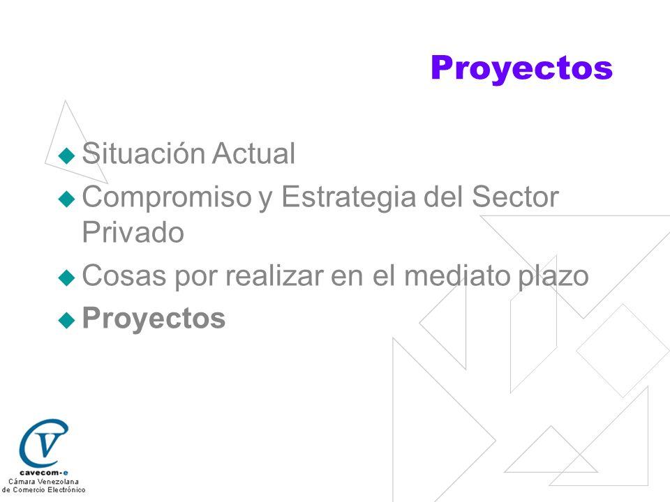 Proyectos Situación Actual Compromiso y Estrategia del Sector Privado