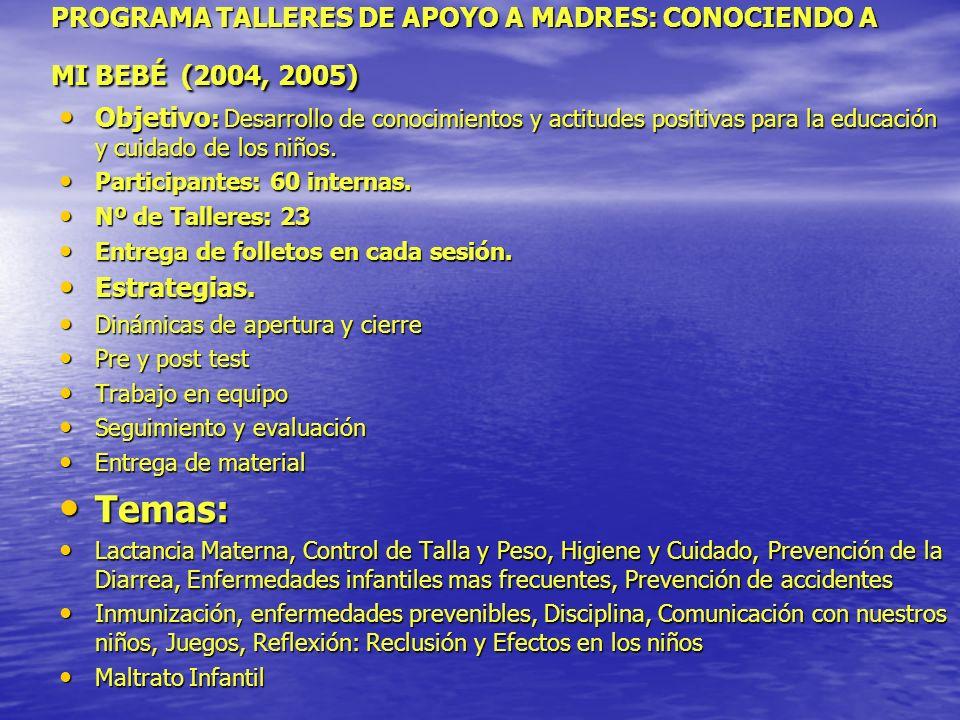 PROGRAMA TALLERES DE APOYO A MADRES: CONOCIENDO A MI BEBÉ (2004, 2005)