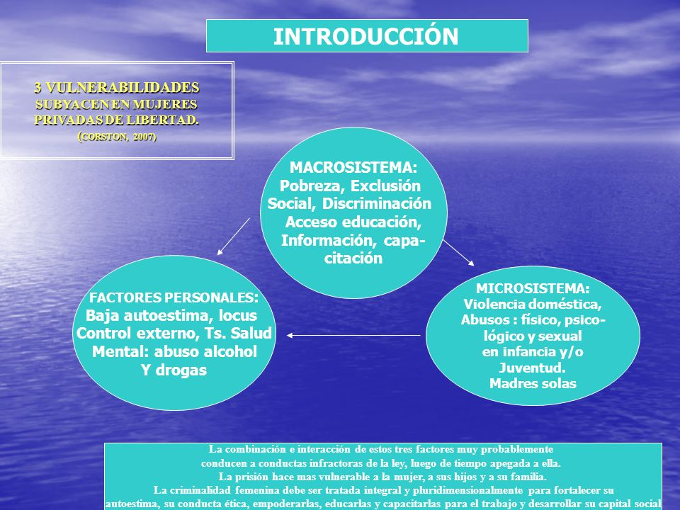 INTRODUCCIÓN 3 VULNERABILIDADES SUBYACEN EN MUJERES PRIVADAS DE LIBERTAD. (CORSTON, 2007) MACROSISTEMA: