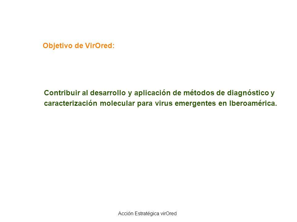 Acción Estratégica virOred