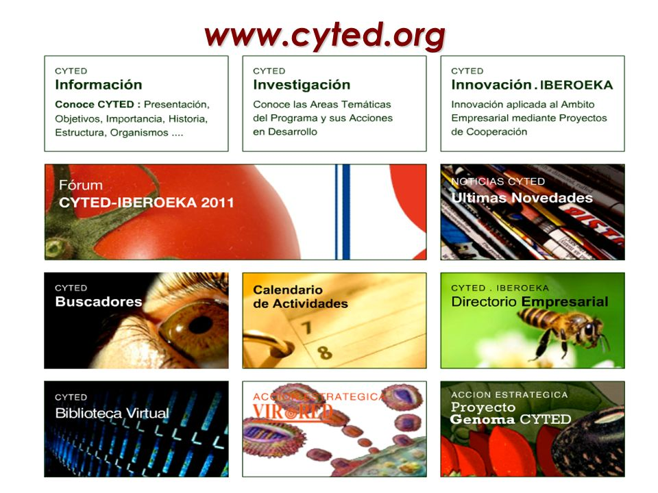 www.cyted.org