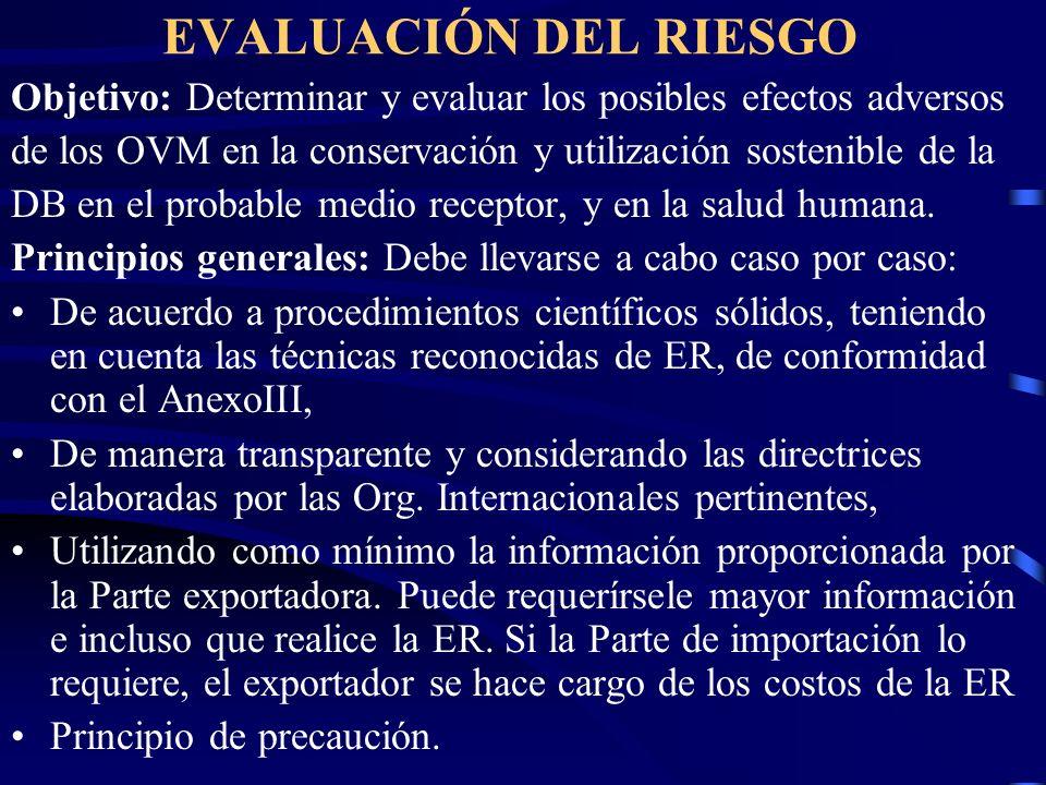 EVALUACIÓN DEL RIESGO Objetivo: Determinar y evaluar los posibles efectos adversos. de los OVM en la conservación y utilización sostenible de la.
