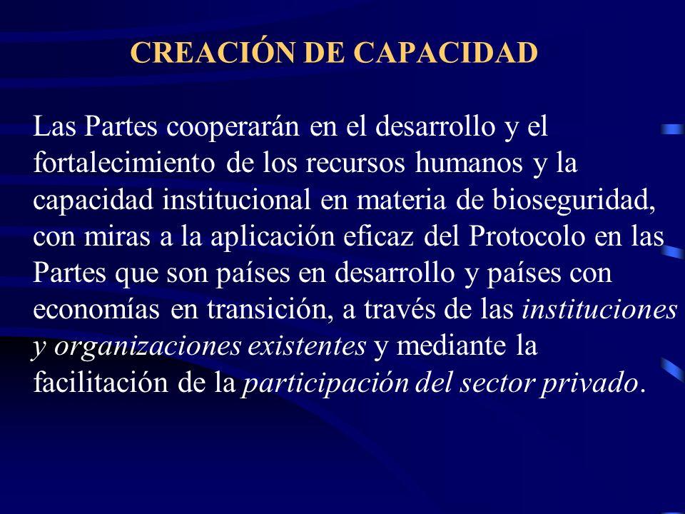 CREACIÓN DE CAPACIDAD