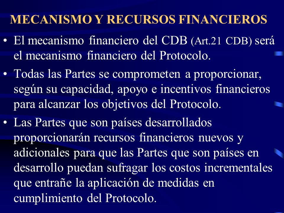 MECANISMO Y RECURSOS FINANCIEROS