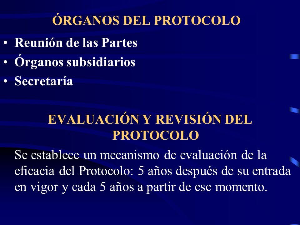 EVALUACIÓN Y REVISIÓN DEL PROTOCOLO
