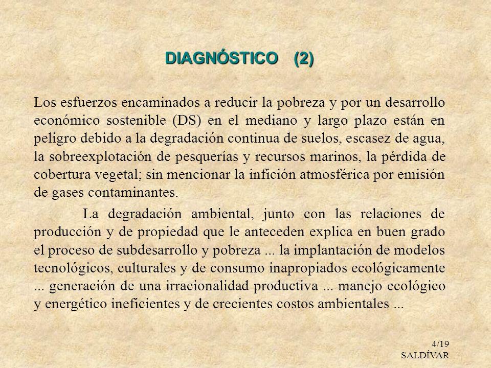 DIAGNÓSTICO (2)