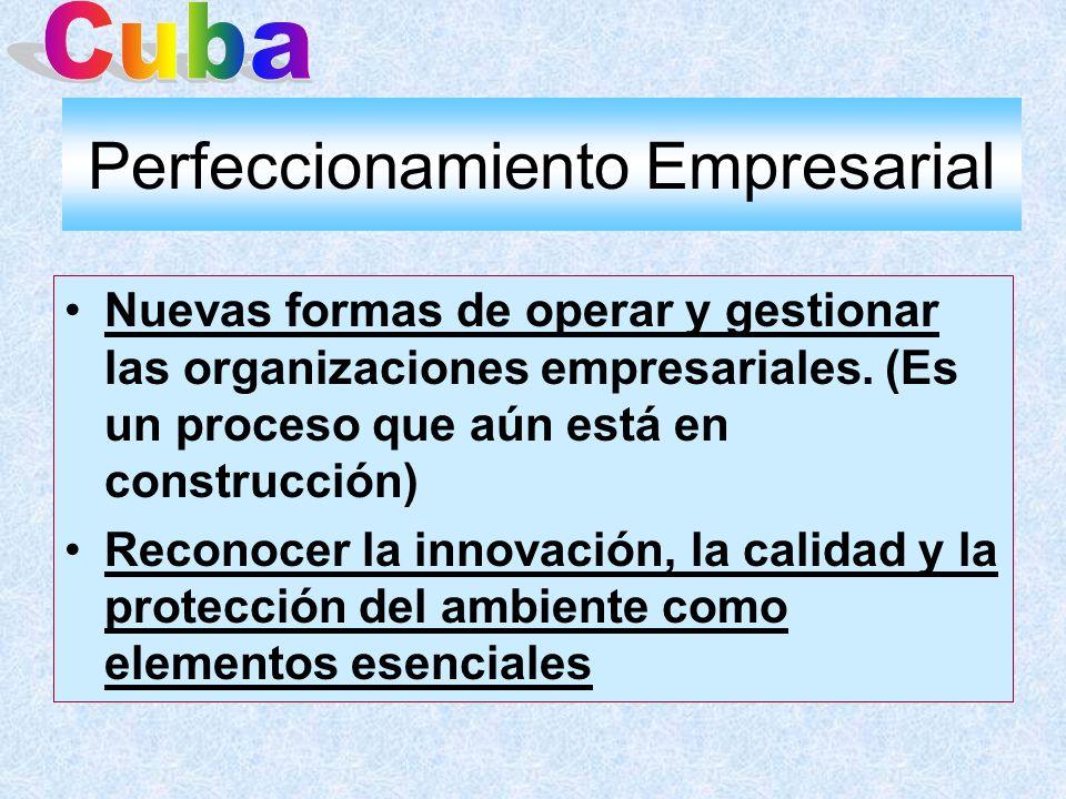 Perfeccionamiento Empresarial