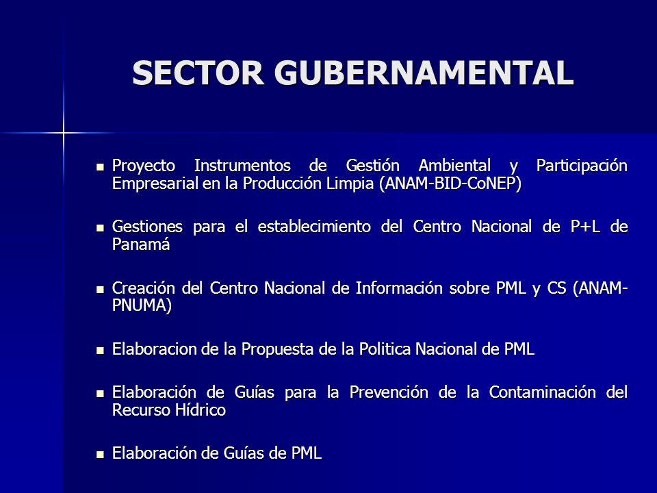 SECTOR GUBERNAMENTAL Proyecto Instrumentos de Gestión Ambiental y Participación Empresarial en la Producción Limpia (ANAM-BID-CoNEP)