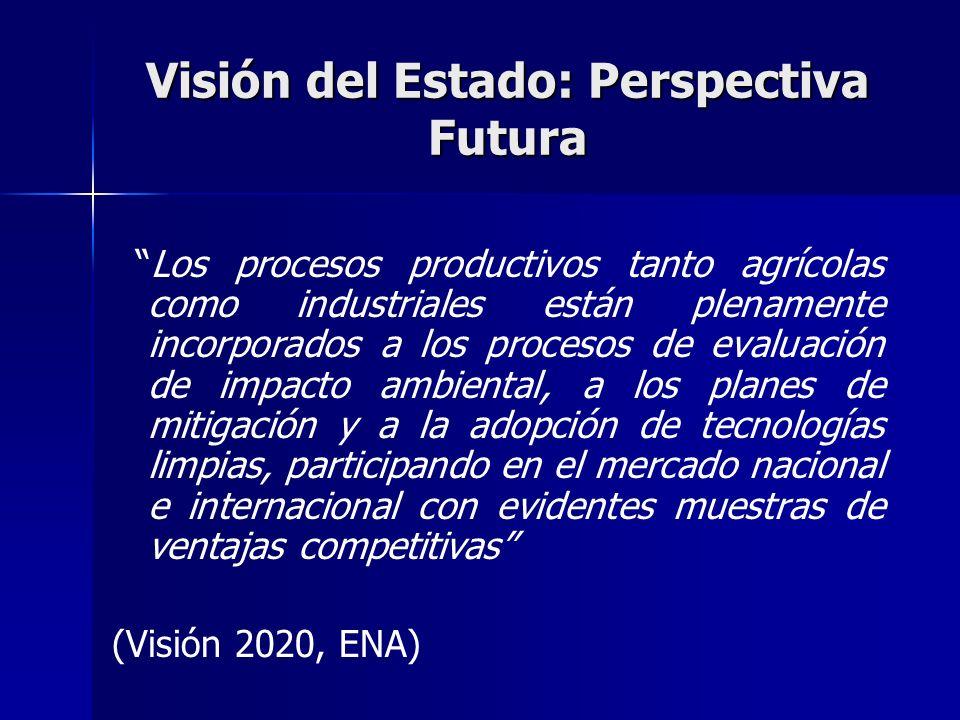 Visión del Estado: Perspectiva Futura