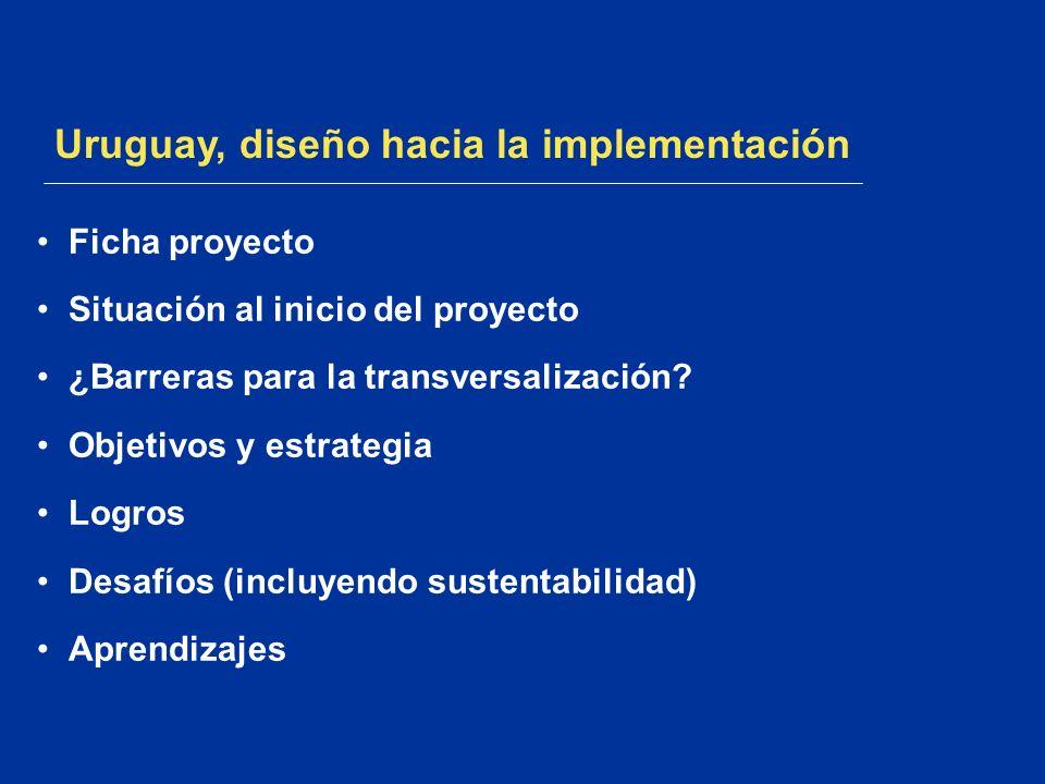 Uruguay, diseño hacia la implementación