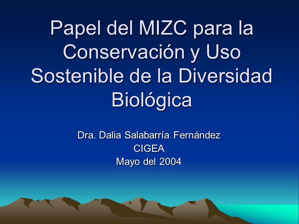 Dra. Dalia Salabarría Fernández CIGEA Mayo del 2004