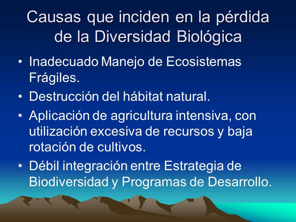 Causas que inciden en la pérdida de la Diversidad Biológica
