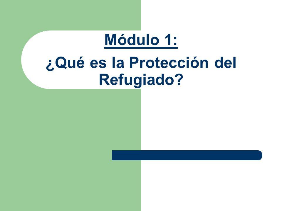 Módulo 1: ¿Qué es la Protección del Refugiado
