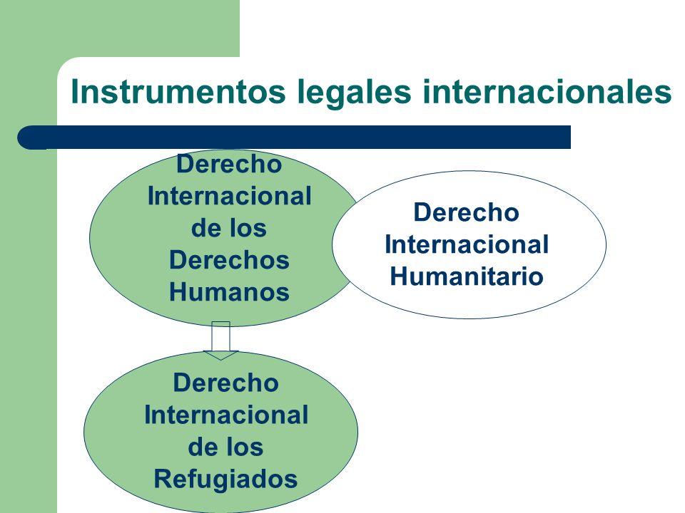 Instrumentos legales internacionales
