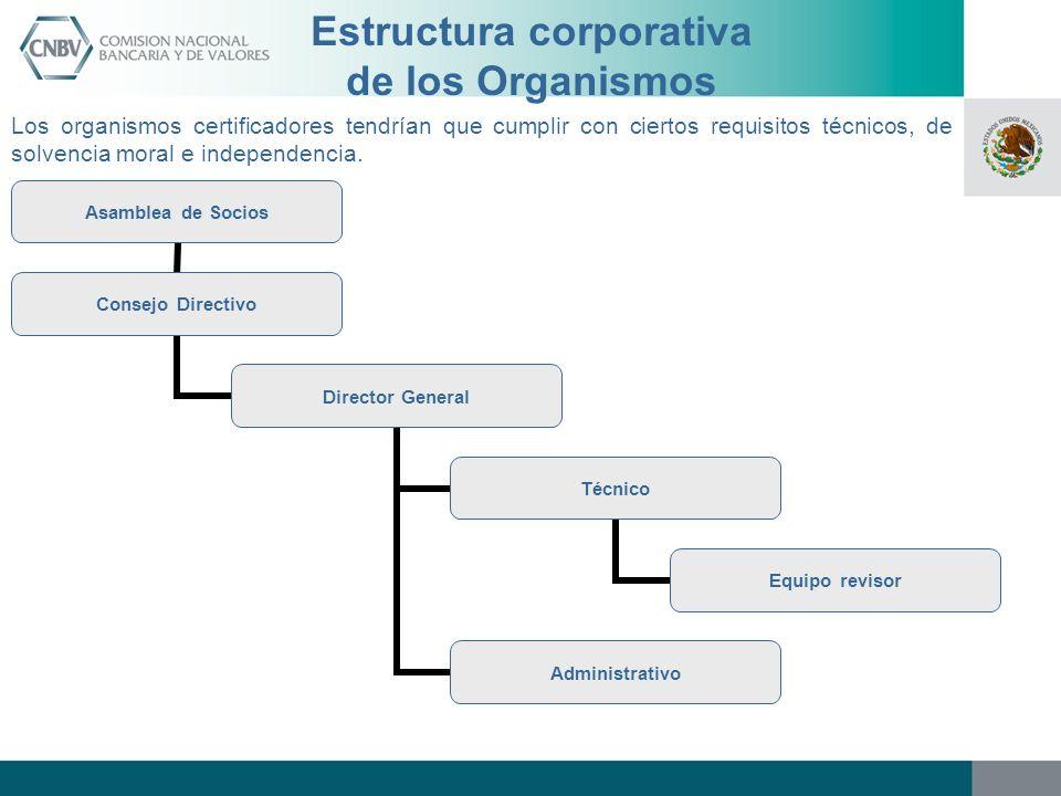 Estructura corporativa de los Organismos