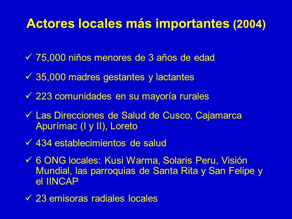 Actores locales más importantes (2004)