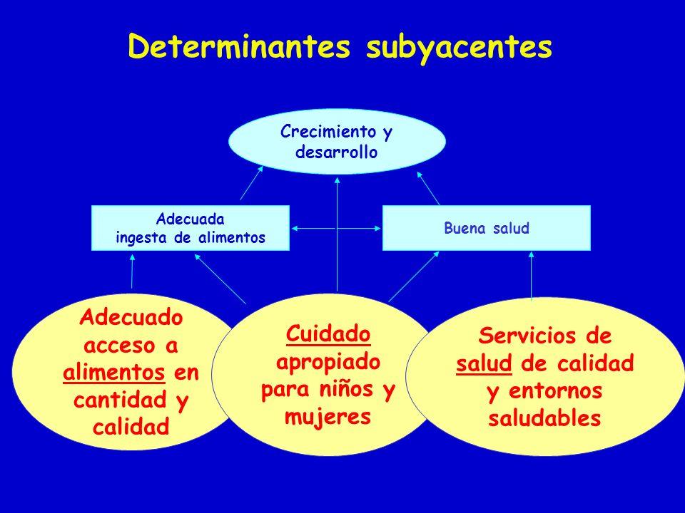 Determinantes subyacentes