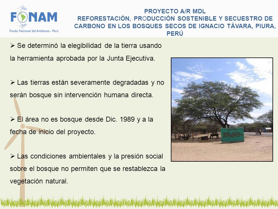 PROYECTO A/R MDL REFORESTACIÓN, PRODUCCIÓN SOSTENIBLE Y SECUESTRO DE CARBONO EN LOS BOSQUES SECOS DE IGNACIO TÁVARA, PIURA, PERÚ
