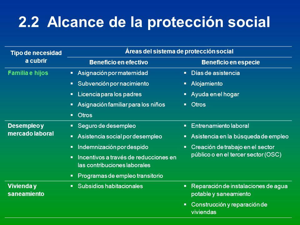 Tipo de necesidad a cubrir Áreas del sistema de protección social