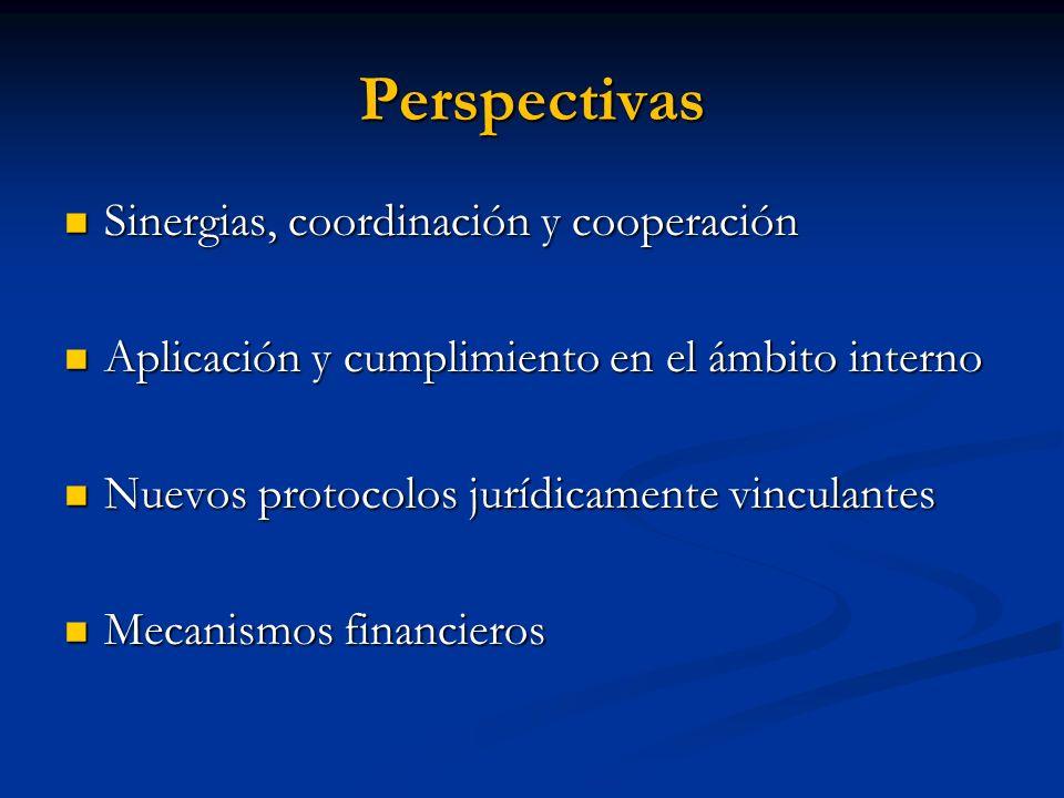 Perspectivas Sinergias, coordinación y cooperación